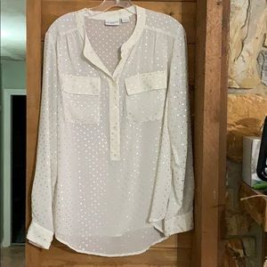 Sheer Off White with Silver Polka Dots Blouse